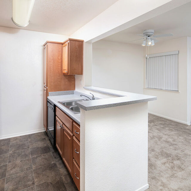 Kitchen with Living Area